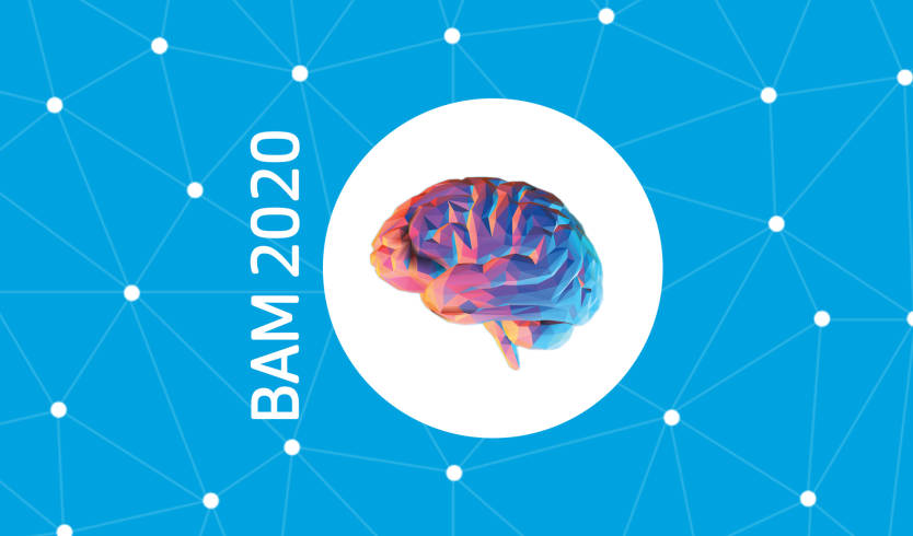 Brain Awareness Month 2020: Palmerston North